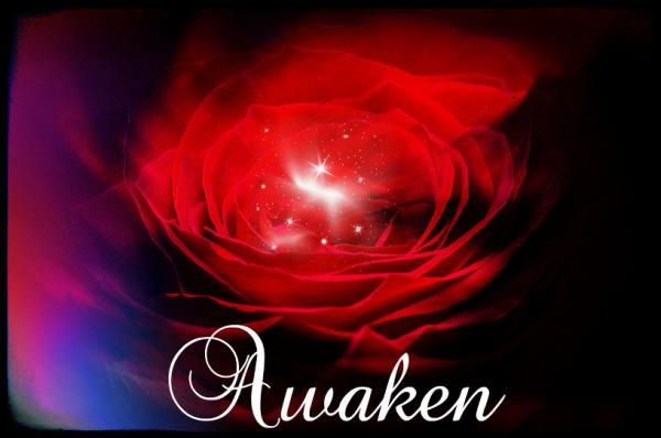Awaken Sparkling Crop